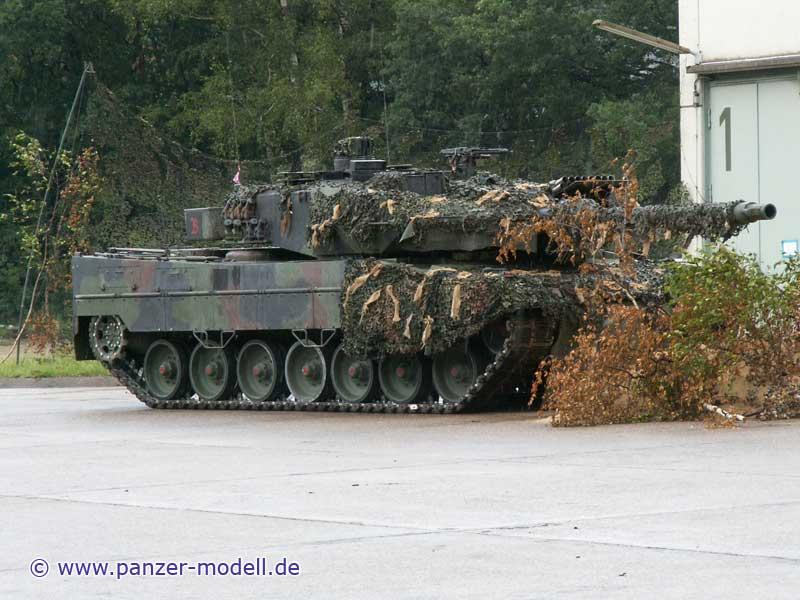 http://www.panzer-modell.de/referenz/in_detail/leo2a6m/017g.jpg